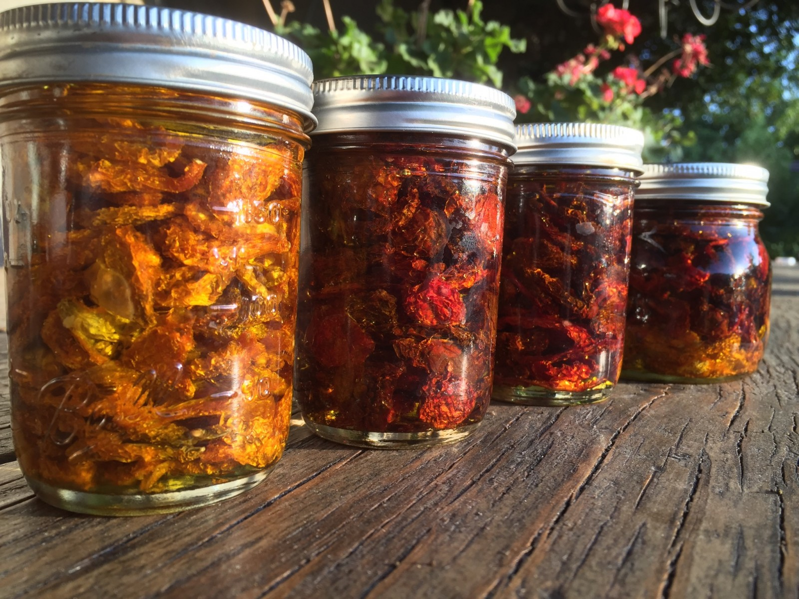 Wine soaked sundried tomatoes garden variety life Sun garden riesling