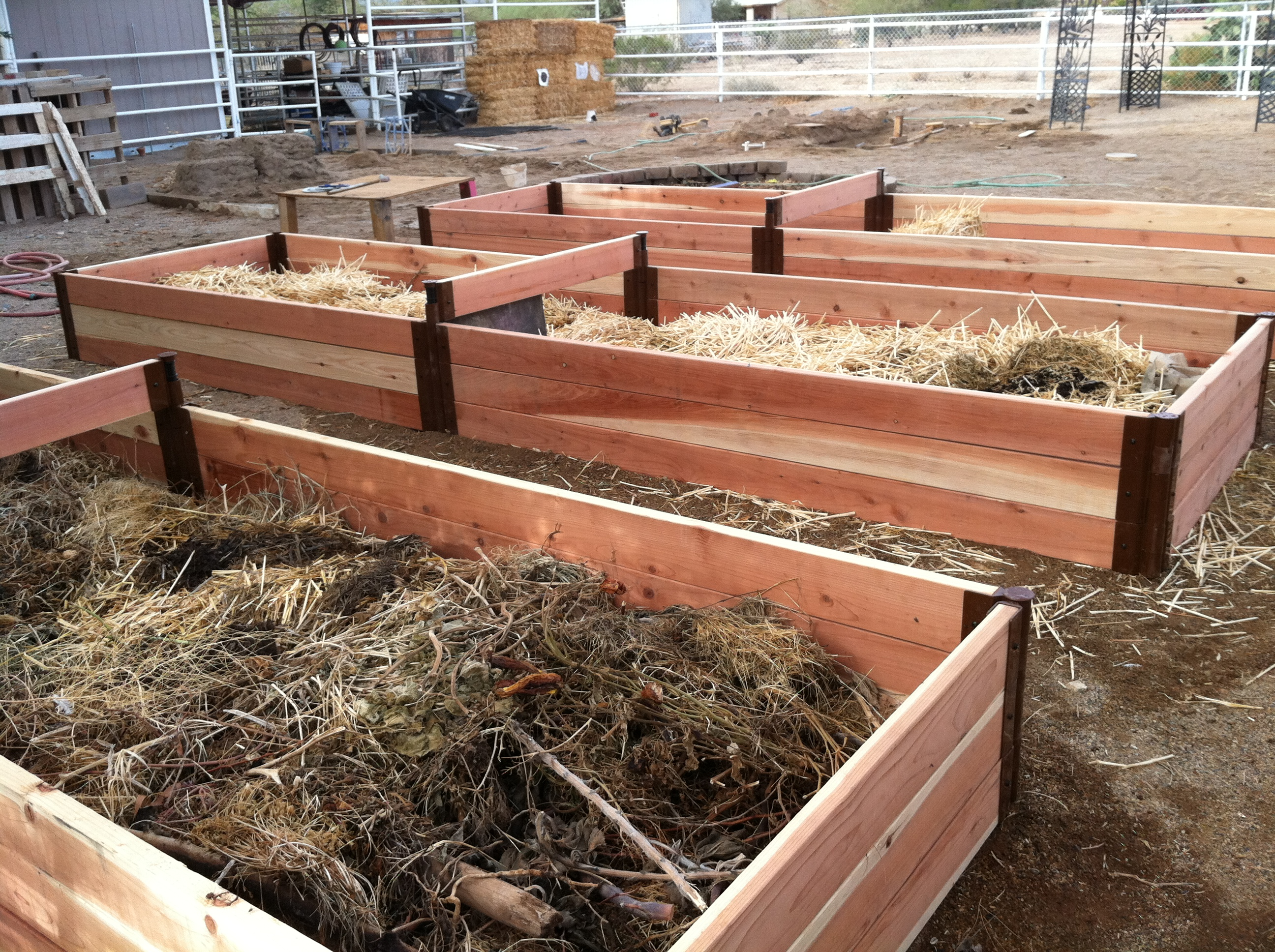 2012-vegie-bed-started