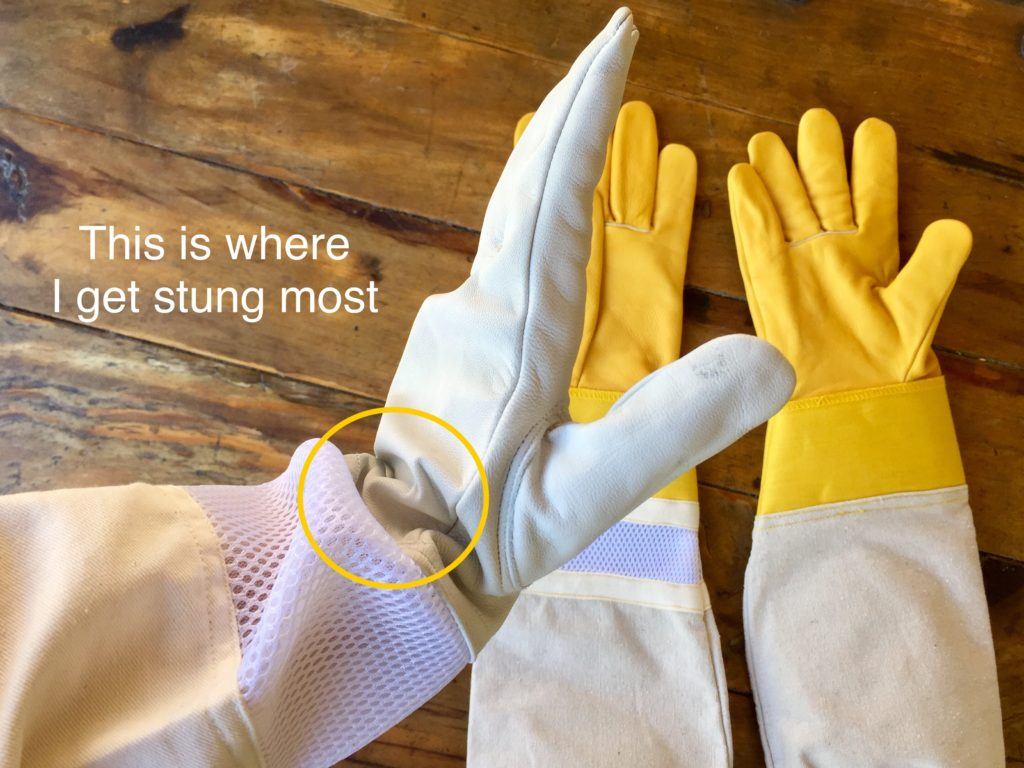 beekeeping white gloves